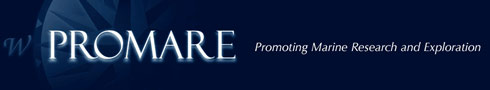 Promare Logo